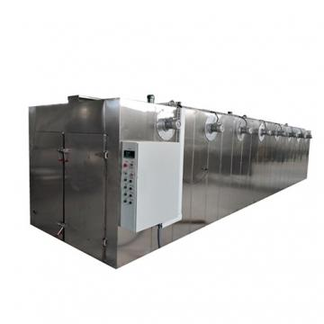 Small and Large Grape Fruit Drying Machine