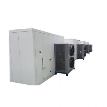 CT-C-I Vegetable Fruit Drying Oven Machine, Dehydration Machine