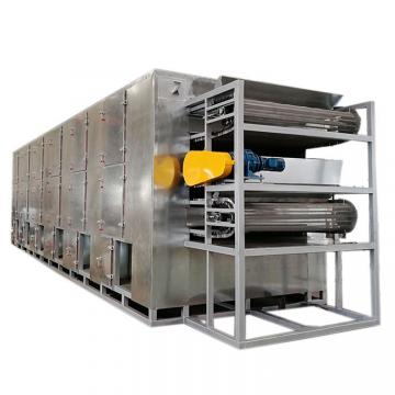 Continuous Conveying Belt Fruit Dryer and Lemon Apple Orange Drying Machine