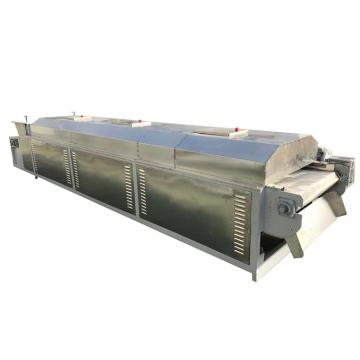 Fruit Clice Various Vegetables Drying Machine Continuous Dryer