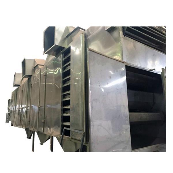 Htwx Low Temperature Tray Vacuum Microwave Fruit Vegetable Drying Dryer Machine #1 image