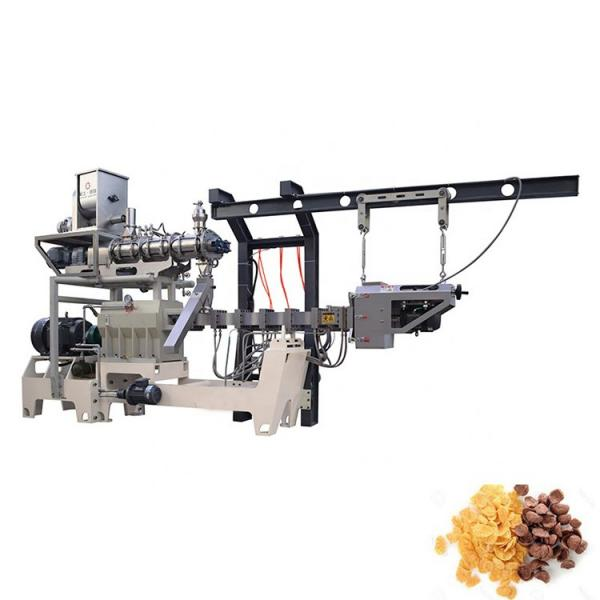 Instant Oat Beans Rice Corn Flakes Flaking Making Machine #1 image