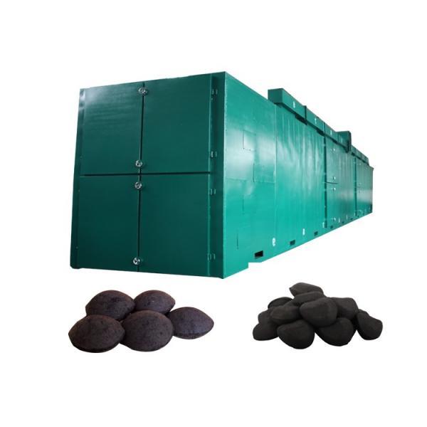 Dw Series Mesh Belt Dryer #3 image