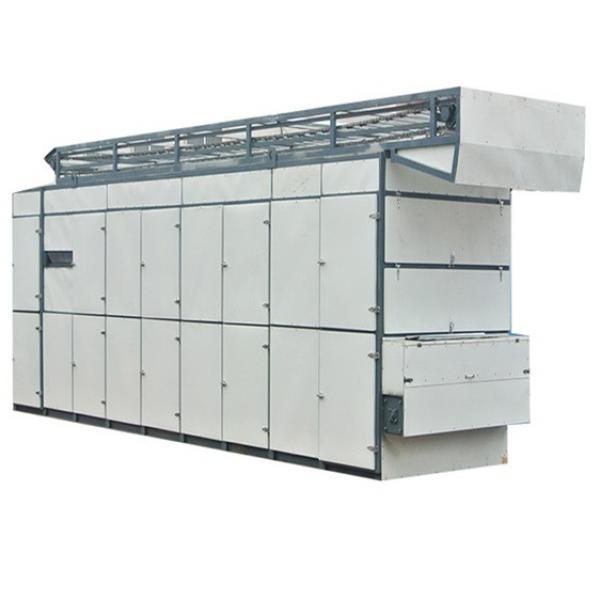 Dw Series Mesh Belt Dryer #1 image